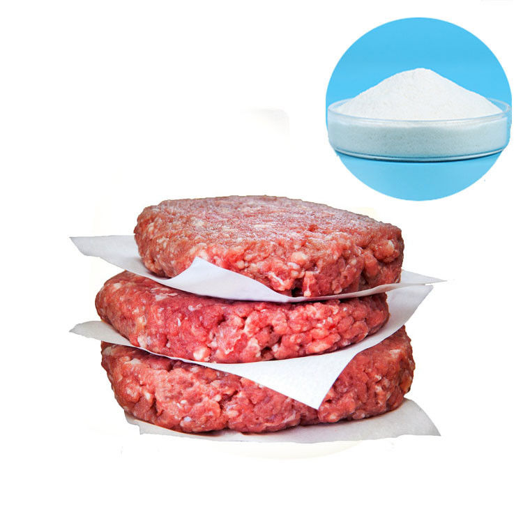 Vegan Meat Food Grade Methyl Cellulose CAS 9004-67-5